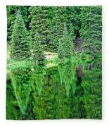 Lake Irene 12-1 Fleece Blanket