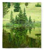 Lake Irene 12-2 Fleece Blanket