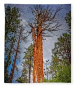 Lake Tahoe Trees On 89  Fleece Blanket
