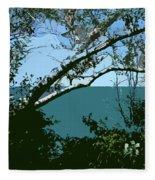 Lake Through The Trees Fleece Blanket