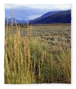 Lamar Valley 2 Fleece Blanket