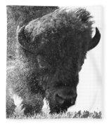 Lamar Valley Bison Black And White Fleece Blanket