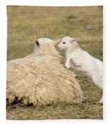 Lamb Jumping On Mom Fleece Blanket