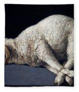 Lamb Of God. Agnus Dei Fleece Blanket