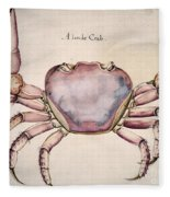 Land Crab Fleece Blanket