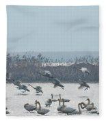 Landing Fleece Blanket