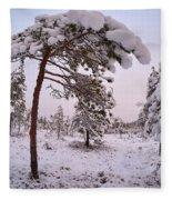 Landscape In Pastel Colors Fleece Blanket
