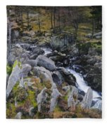 Landscape In Snowdonia Fleece Blanket