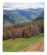 Landscape In Vail Fleece Blanket