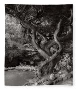 Landscape - The Forbidden Forest Fleece Blanket