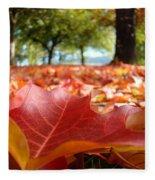 Landscape Trees Park Art Prints Autumn Fall Leaves Baslee Troutman Fleece Blanket