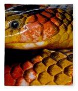 Langsdorfs Coralsnake Fleece Blanket