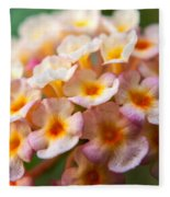 Lantana-1 Fleece Blanket