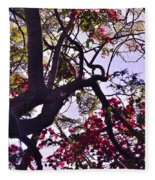 Late Afternoon Tree Silhouette With Bougainvilleas IIi Fleece Blanket