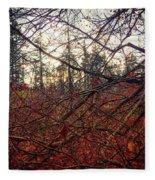 Late Autumn Morning Fleece Blanket