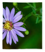 Late Purple Aster Fleece Blanket