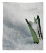 Late Snow Fleece Blanket