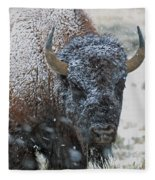 Early Spring Late Snow Buffalo Fleece Blanket
