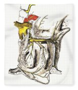 Lateral Wall Of Nasal Cavity Fleece Blanket