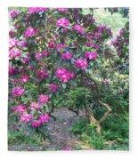Laurel Mountain Tree Fleece Blanket