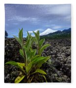 Lava And Villa Rica Volcano Fleece Blanket