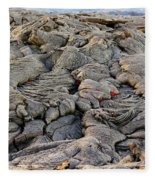 Lava Peeking At Us Fleece Blanket