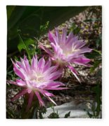 Lavendar Cactus Flowers Fleece Blanket