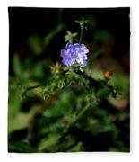 Lavender Hue Fleece Blanket