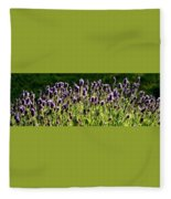 Lavender Pano Fleece Blanket