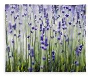 Lavender Patterns Fleece Blanket