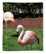 Lawn Ornaments Fleece Blanket