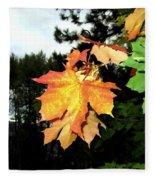 Leading The Way Into Fall Fleece Blanket