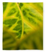 Leaf Abstract Fleece Blanket