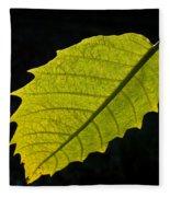 Leaf Aglow Fleece Blanket