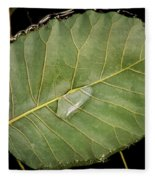 Leaf And Water Fleece Blanket