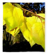 Leaf Line Fleece Blanket