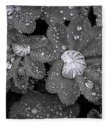 Leaf Pools Fleece Blanket