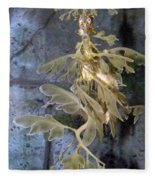 Leafy Sea Dragon  Fleece Blanket