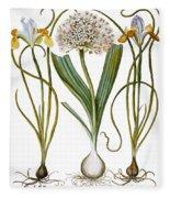 Leek And Irises, 1613 Fleece Blanket