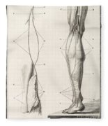 Leg Nerve, 18th Century Illustration Fleece Blanket