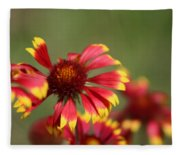 Lemon Yellow And Candy Apple Red Coneflower Fleece Blanket