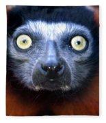 Lemur Glare Fleece Blanket