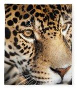 Leopard Face Fleece Blanket by John Wadleigh