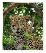 Leopard With Piercing Eyes Fleece Blanket