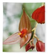 Lepanthes Maduroi Orchid Fleece Blanket