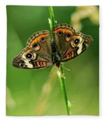 Lepidoptera Fleece Blanket