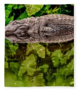 Let Sleeping Gators Lie Fleece Blanket