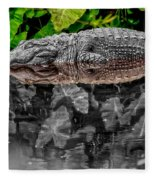 Let Sleeping Gators Lie - Mod Fleece Blanket