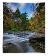 Letchworth's Wolf Creek  Fleece Blanket