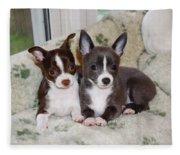 Lexi And Gracie Fleece Blanket